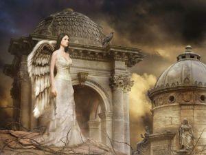 Angel-211114_800