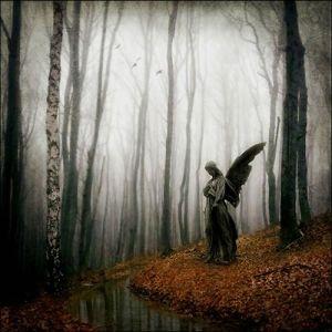angel103