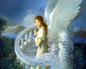 angel147