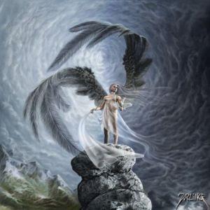 angel56