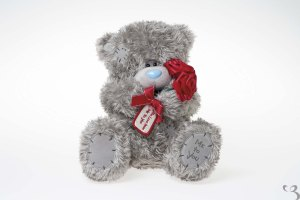 16-me-to-you-plush-bear-with-roses-with-love-from-me-to-you-tatty-teddy-1781-p