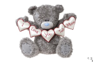 28-me-to-you-bear-with-i-love-you-this-much-hearts-very-large-bear-1778-p