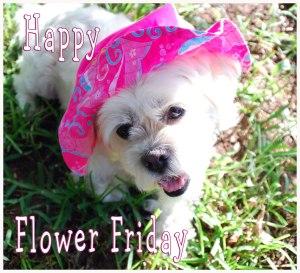 Happy-Flower-Friday