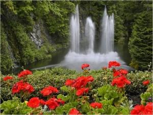 paisaje-con-cascada-y-flores