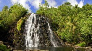 wallpaper-fullhd-cascada-en-medio-de-la-selva-tropical-45759