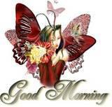 FairyMorning