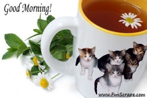 good_morning_02