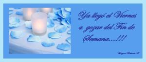 blue-rose-petals