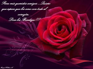 2011-red-rose-valentine-day-wallpaper