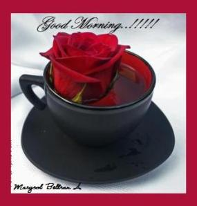 red-rose-in-black-tea-cup-michele-roohani