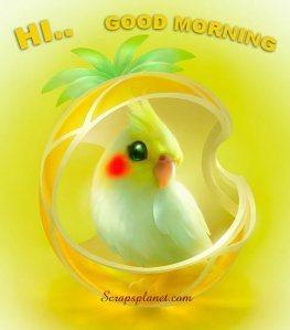 good-morning-23