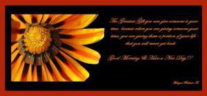 2889-golden-petals