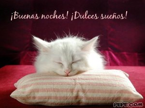 buenas_noches_dulces_suenos_7