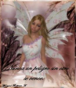 fairy92