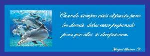 dibujos-delfines