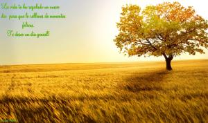beautiful_nature-wide