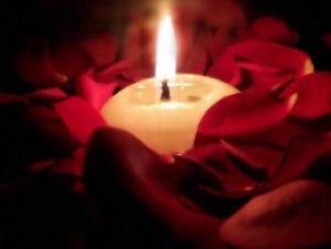 dark-red-rose-petals_1
