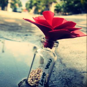 love-bottle