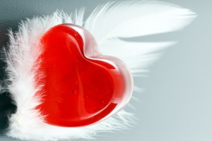 love-feather-wallpaper