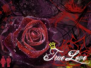 true-love-wallpaper-3