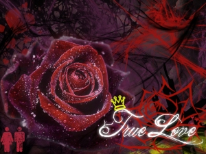 true-love-wallpaper-3