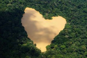 An+aerial+view+of+a+natural+heart+shaped+lake+fed+by+a+spring+in+the+Amazon+River+basin