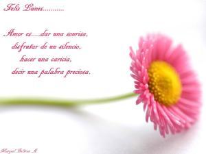 beautiful_flower-normal5_4