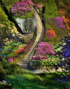 Butchart Garden - The Most Beautiful Natural Garden in the World (23)