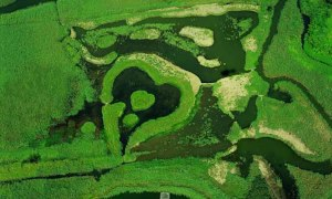 Heart-shaped-wetlands-in-Guandu-Nature-Park-Taipei-Taiwan