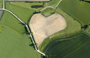 heart3_1577132i
