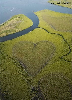 hearts-in-nature-07