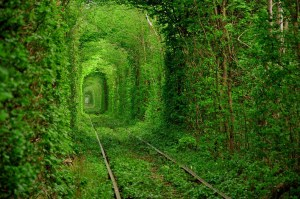 Tunnel-of-Love-beautiful-nature-of-Ukraine